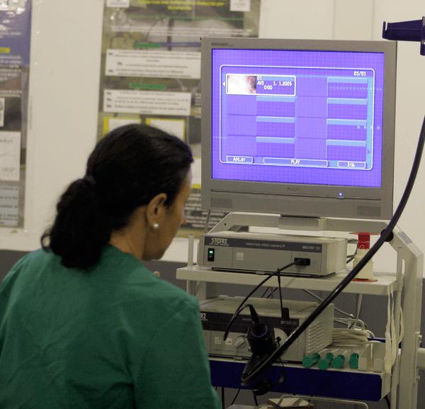 Investigación Centro de Medicina Deportiva Equina