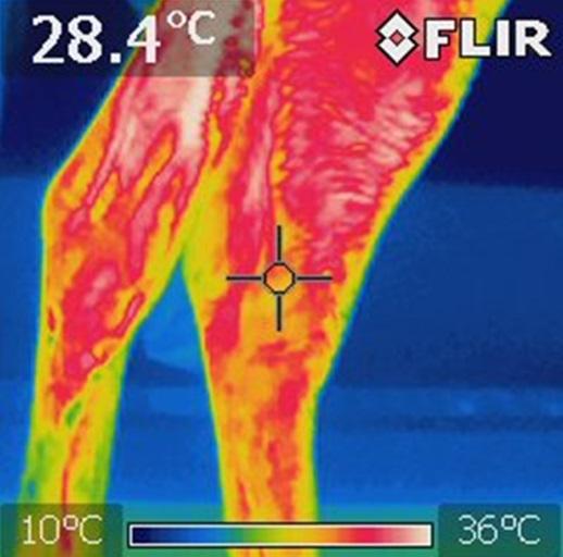 cemede-termica-captura