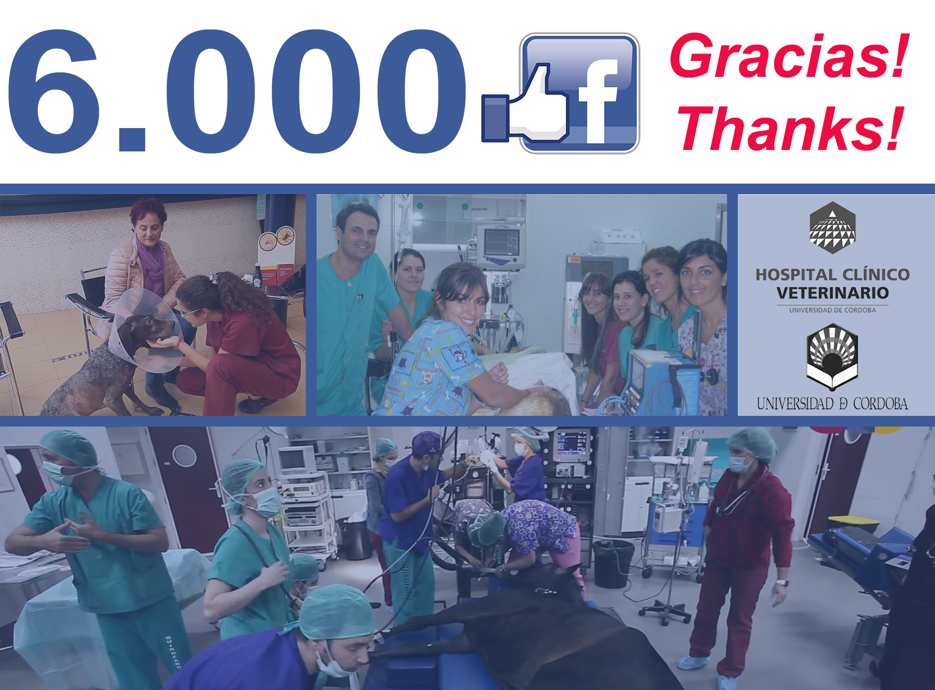 gracias-6000-hcvuco