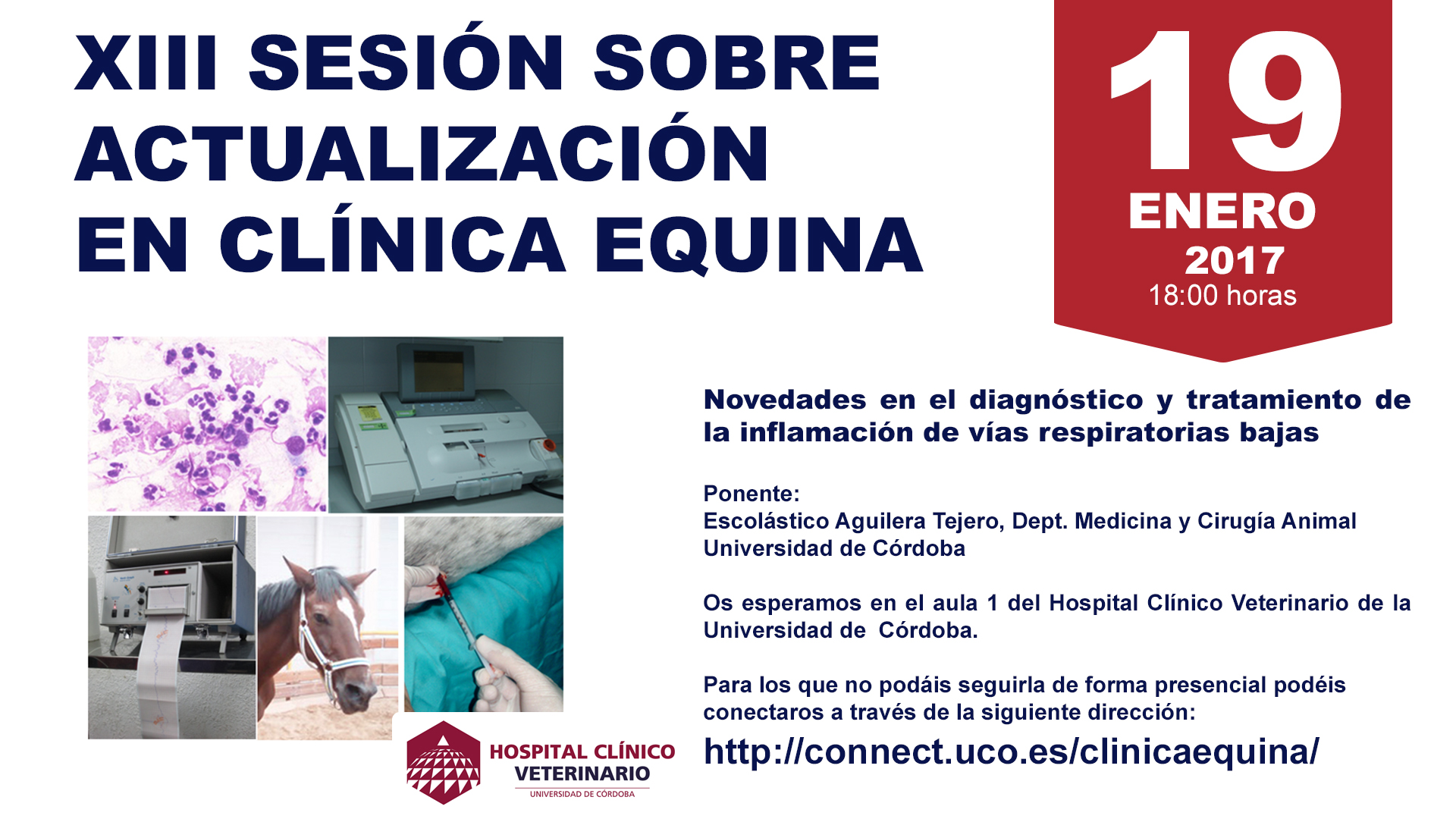 13_SESIONCLINICAEQUINAHCV