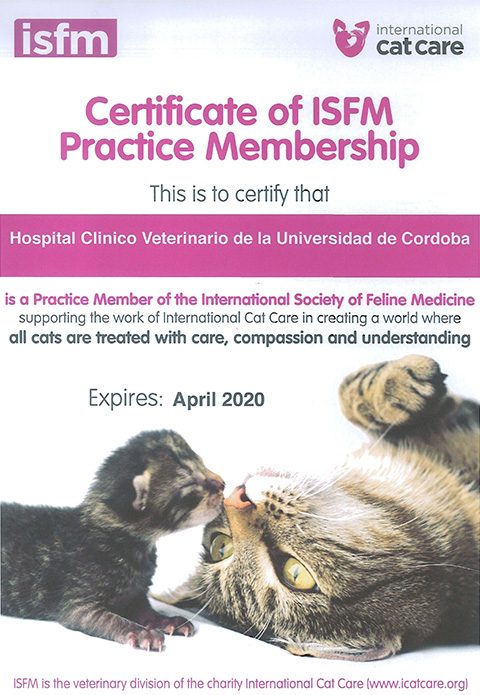 Certificado ISFM-small