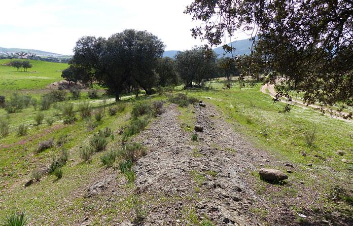 La vía Romana Corduba-Emerita