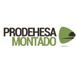 prodehesa