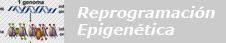Reprogramación Epigenética