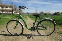 CICLO-CAMPUS: Sistema de préstamo de bicicletas en el Campus de Rabanales