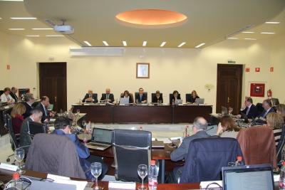 Sesión de Consejo de Gobierno de la Universidad de Córdoba