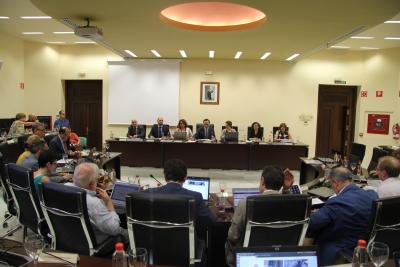 Vista general de la sesión extraordinaria del Consejo de Gobierno celebrada hoy