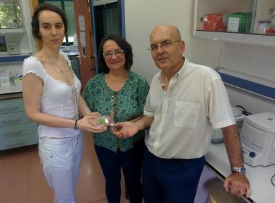 Investigadores de la UCO y del IAS enseñan muestras de borraja liofilizada y productos derivados de esta planta