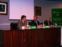 De izq. a dcha. Federico Navarro,Antonio Márquez y Carlos Ruiz