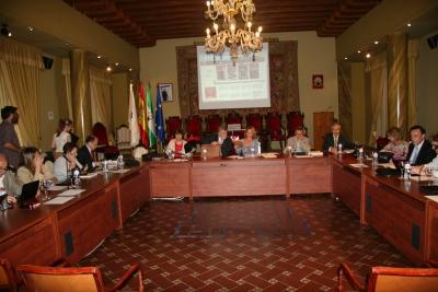 Un momento de la sesion celebrada hoy por el Consejo Social