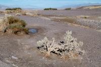 Imagen de suelo erosionado