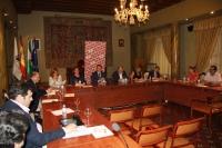 Un momento de la celebración pleno del Consejo Social  celebrado hoy