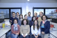 Grupo de investigación,  liderado por la catedrática de Genética, María Teresa Roldán Arjona.