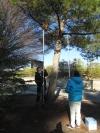 Las cajas nido ubicadas en el Campus de Rabanales