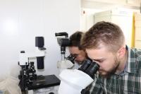 Dos de los autores del artículo analizando una muestra en el laboratorio.