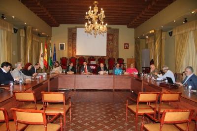Vista general del Pleno del Consejo Social durante su sesión ordinaria