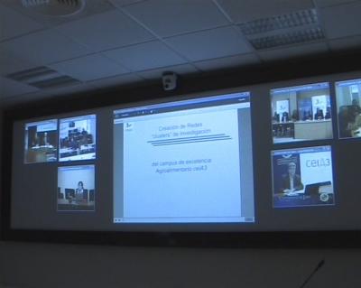 Un momento de la reunión virtual