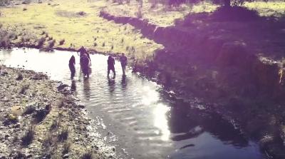 La empresa Guadalictio advierte sobre la extinción de la fauna piscícola ibérica