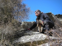The International Research Community Evaluates GPS Collars to Geolocate Wild Animals