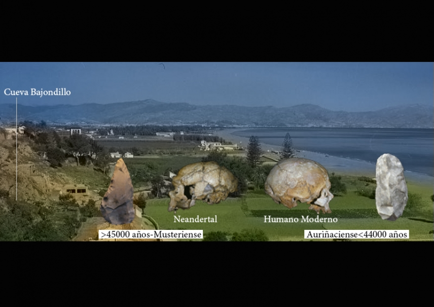 Modern humans replaced Neanderthals in southern Spain 44,000 years ago