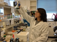 The Researcher María Agustina Dominguez during her work on lab