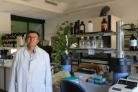 The University of Cordoba guides plants towards obtaining iron