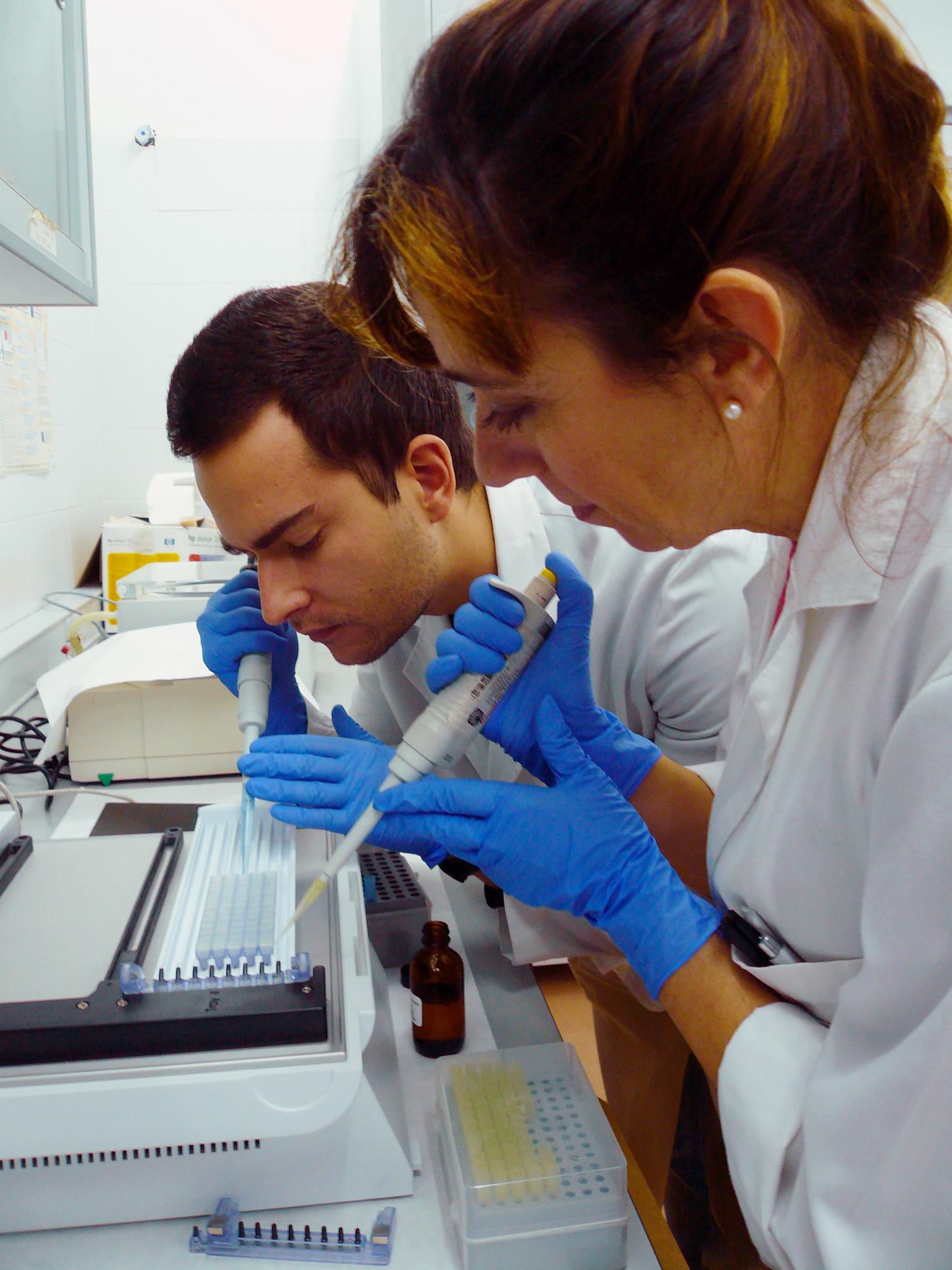 Investigadores universidad de Cordoba