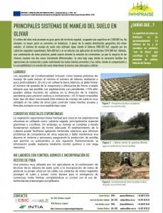 IWMPRAISE_Sistemas manejo olivar España_IS3
