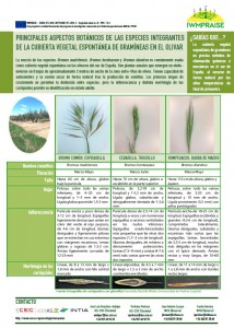 Principales aspectos botánicos especies cubierta vegetal espontánea de gramíneas