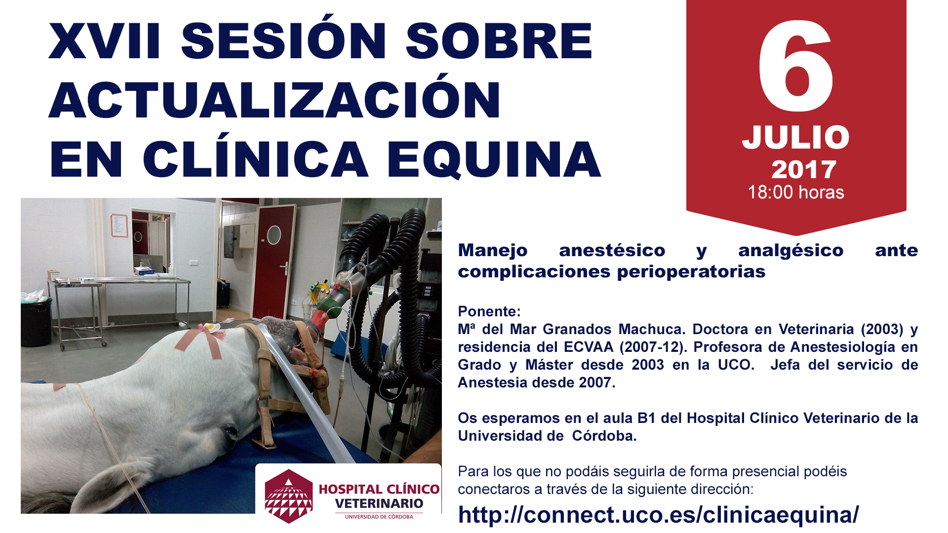 17_SESIONCLINICAEQUINAHCV
