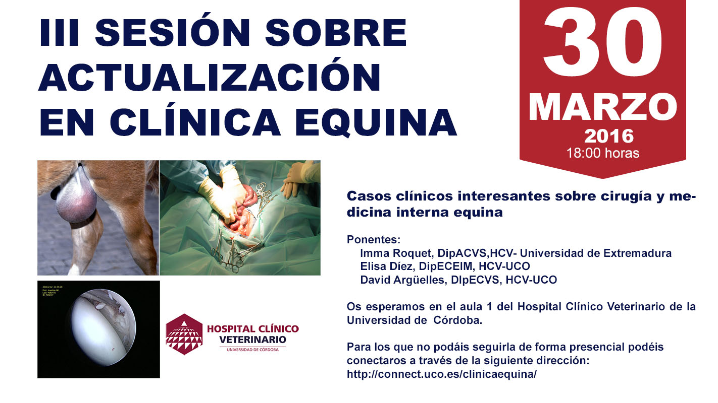 3SESIONCLINICAEQUINAHCV-22.jpg