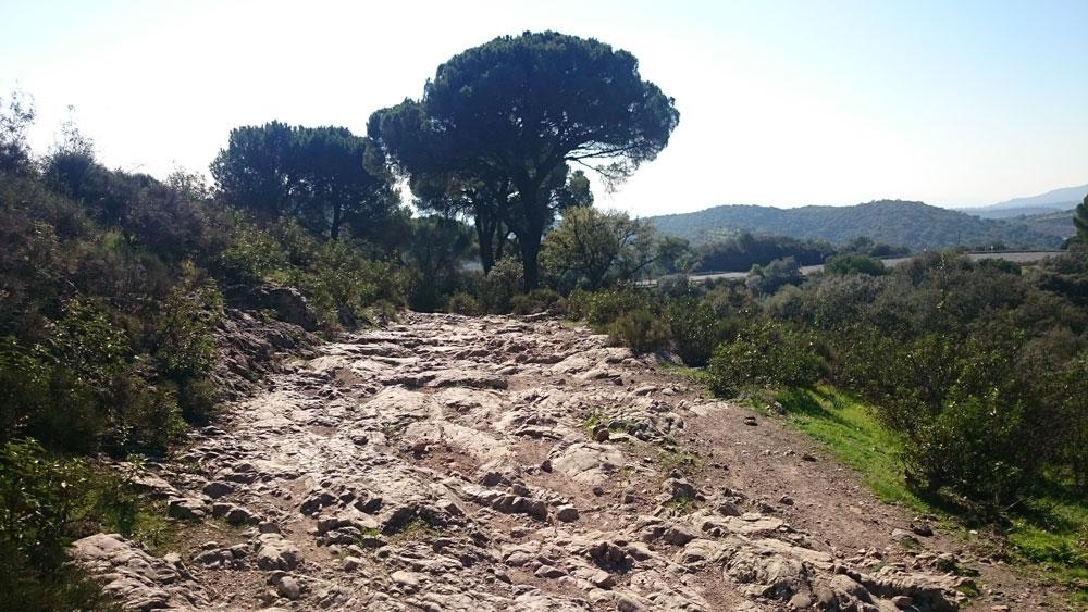Subida a Cerro Muriano. ©Antonio Monterroso Checa