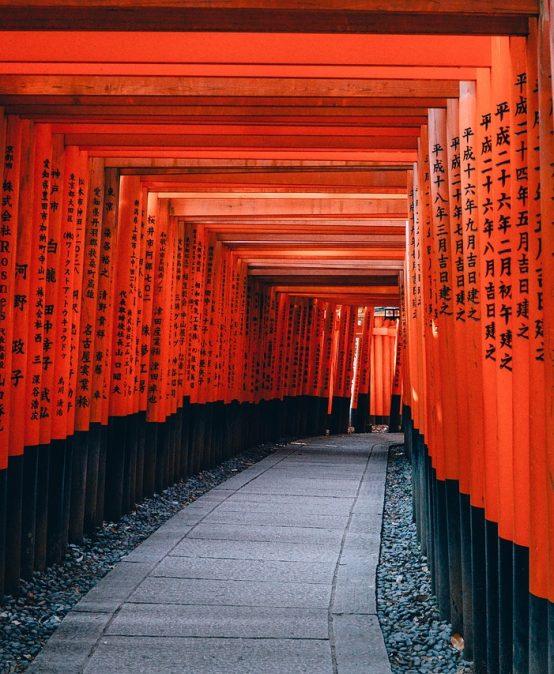 Cursos anuales japonés