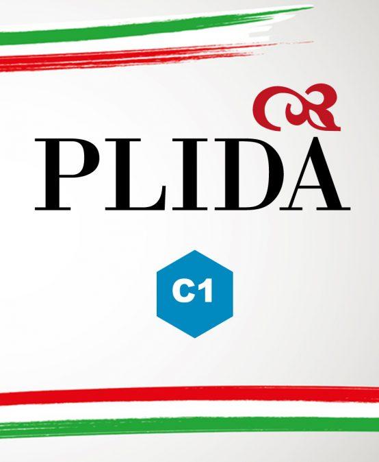 Curso preparatorio acreditación PLIDA C1