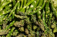 The chromosome responsible for asparagus gender is characterized