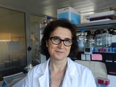 La doctora María del Mar Malagón