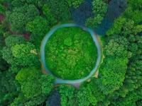 Abierto el plazo de resúmenes para el II Congreso Internacional de Biorrefinería de Materiales Lignocelulósicos