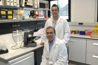Los doctores Manuel Tena-Sempere (sentado) y Juan Roa