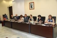 Momento de la sesión ordinaria de Consejo de Gobierno celebrada hoy