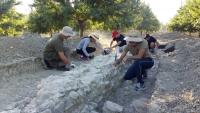 Estudiantes excavan en Torreparedones el pasado año