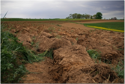 El control de esta erosión permite a los profesionales del sector conocer la situación de los campos y evitar la pérdida y deterioro de las zonas de cultivo