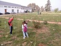 Prácticas en el Bosque Universitario de la asignatura de Ecología, de 2º de Ciencias Ambientales