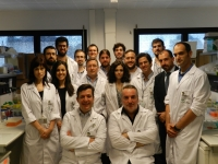 """Imagen de los miembros del grupo """"Hormonas y cáncer"""" y de Innovación del IMIBIC"""