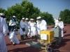 La UCO instala la primera colmena digital de España para controlar en tiempo real la actividad de las abejas