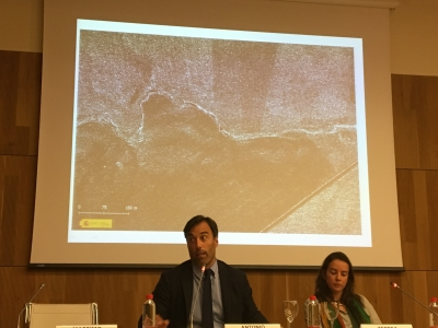 Antonio Monterroso y Teresa Martínez, autores del artículo, durante una intervención sobre su investigación.