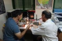 Investigadores del grupo de Ecología, analizando una muestra de mosquito Tigre.