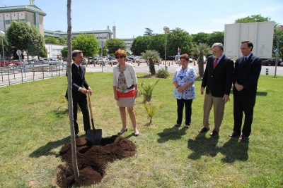 De izq a dcha Rafael Jordano, Julia Angulo,   Ana Rojas, Jose Manuel Roldán y Jose Carlos Gómez en el momento de plantar el árbol