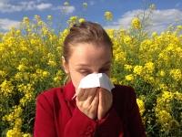 Una persona estornuda como reacción al polen