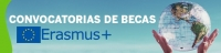 http://www.uco.es/internacional/internacional/index.html