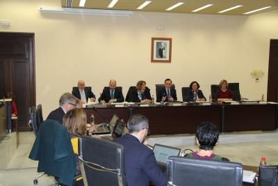 El rector durante la presentación de su informe de gestión ante el Consejo de Gobierno